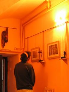 Pohled na výstavu 1